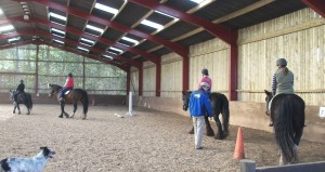 Club Spotlight – Crichton Campus Riding Club