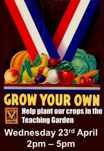 Garden Update & Planting Day 23/04/14