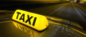 Taxi Steward Survey