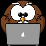 owl_notebook